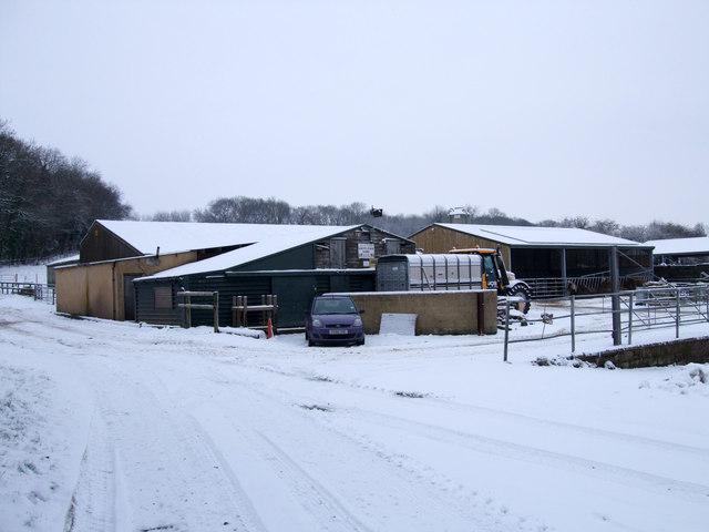 Grove Farm Dairy