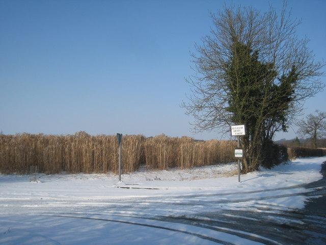 The entrance to Pelham Arms Farm