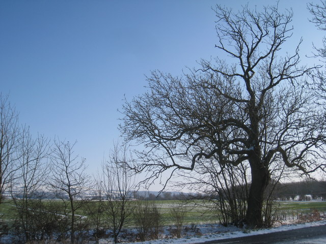 View towards the Wolds