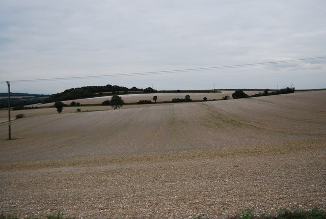 Chalk farmland