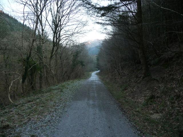 Track in Cwm Gwyddon near Llanfach