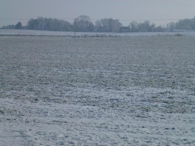 Frozen farmland north of Gedney Dyke
