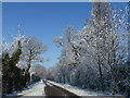 TF4330 : Hoar frost and snow along Durham's Road by Richard Humphrey
