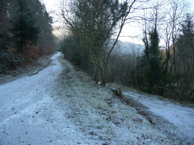 Junction of forestry tracks in Cwm Gwyddon in winter