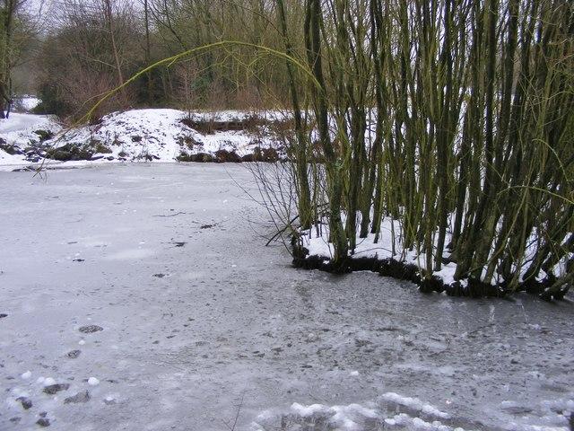 Frozen Park Pool