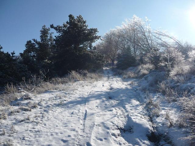 High path above Hafod Owen below Mynydd Maen