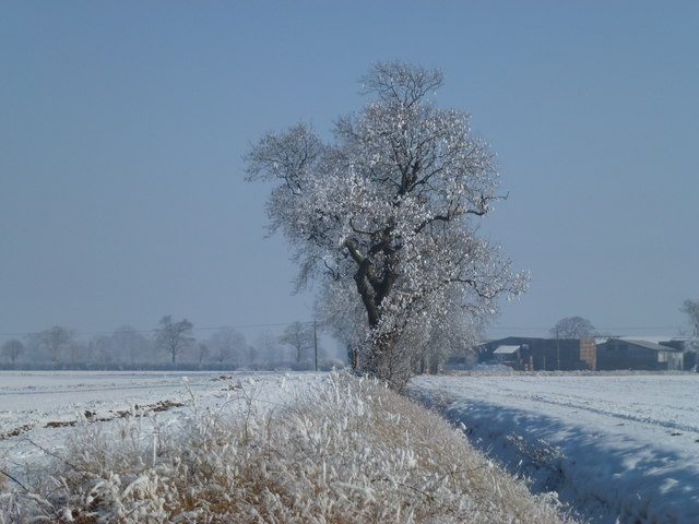 Winter scene looking towards Wiles Farm