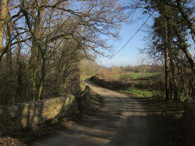 Lane to Rexon
