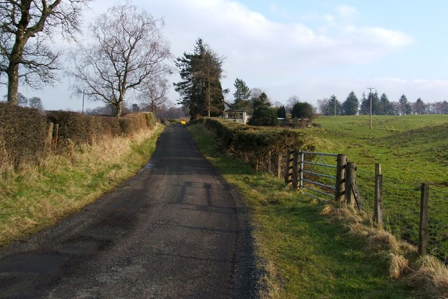 The road to Wester Cameron