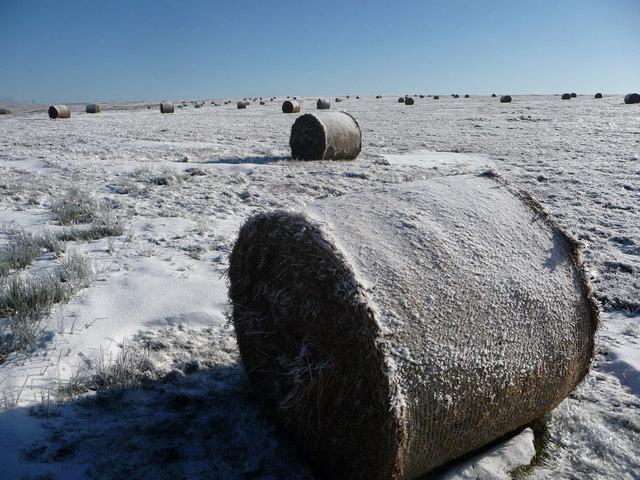 Mynydd Maen in winter