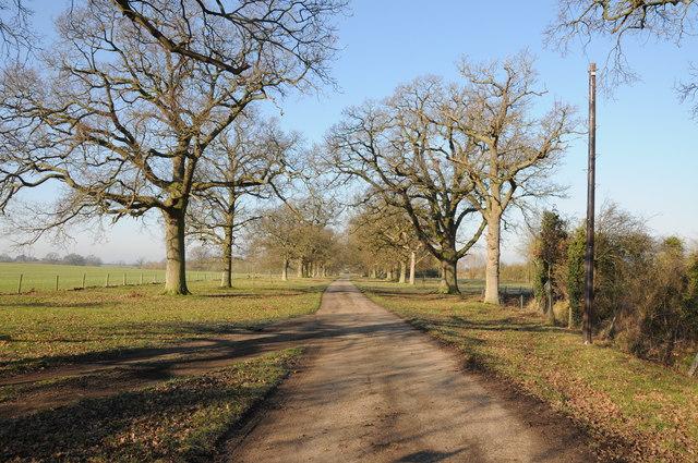Drive to Moor Farm
