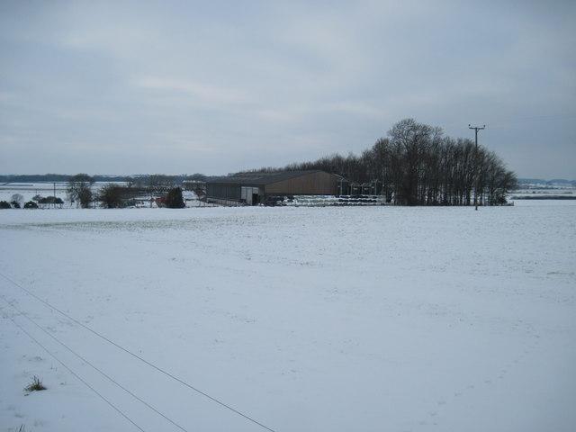 Fields  to  West  Farm
