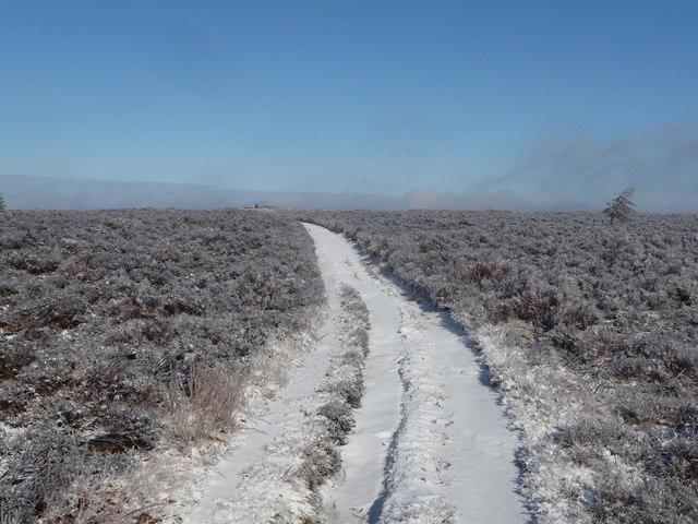 Path on Mynydd Twn-glas