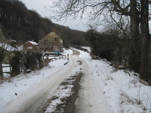 Lane  to  Park  Gate