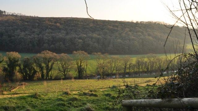 North Devon : Little Dart River Valley