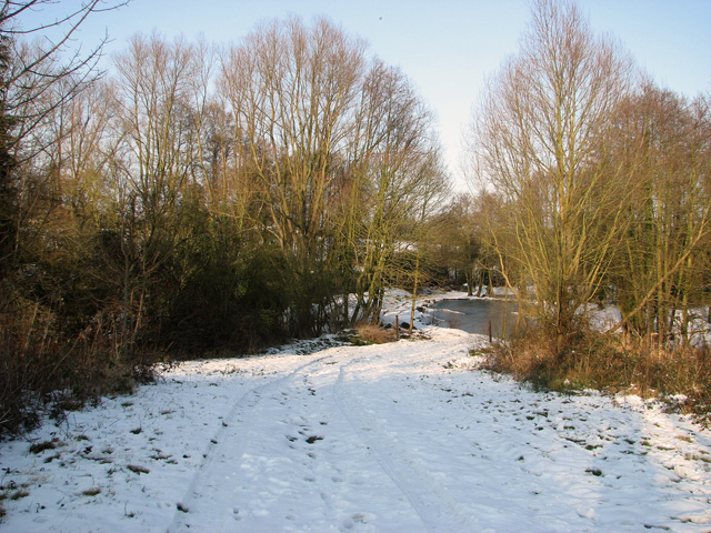 Track to frozen pond near Hintlesham