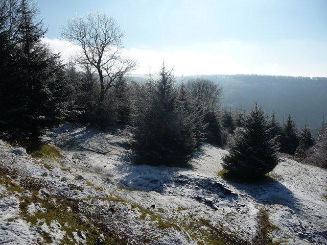 Open space in the forestry plantation above the Gwyddon valley