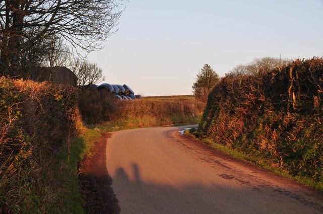 Mid Devon : Darky Lane