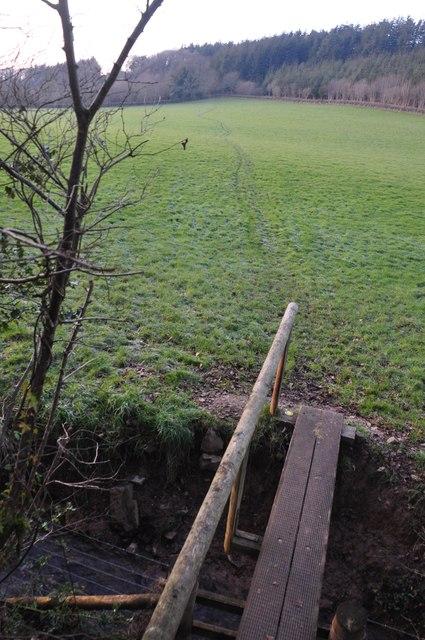 Mid Devon : Footpath & Field