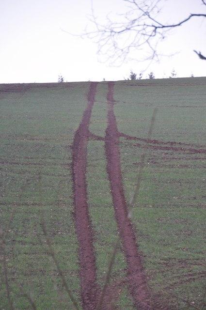 Mid Devon : Tractor Tracks in the Field
