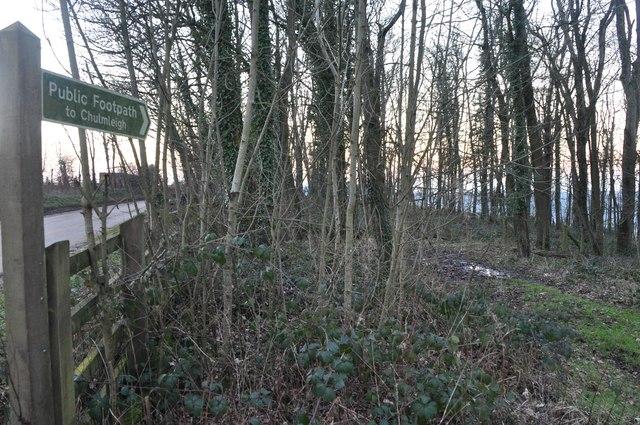 Mid Devon : Footpath Sign & Upcott Woods