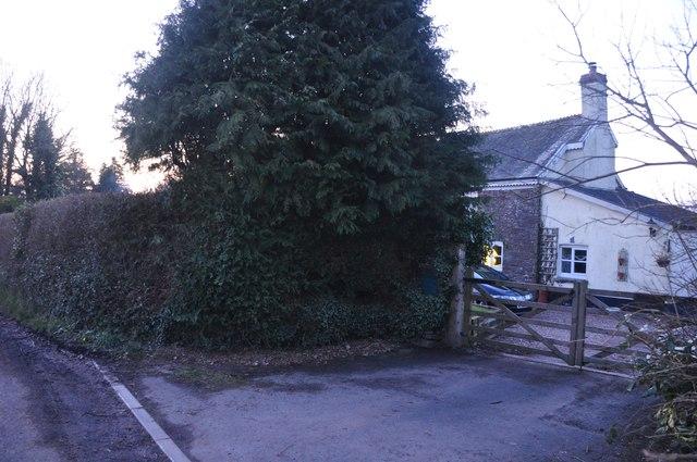 Mid Devon : House & Tree