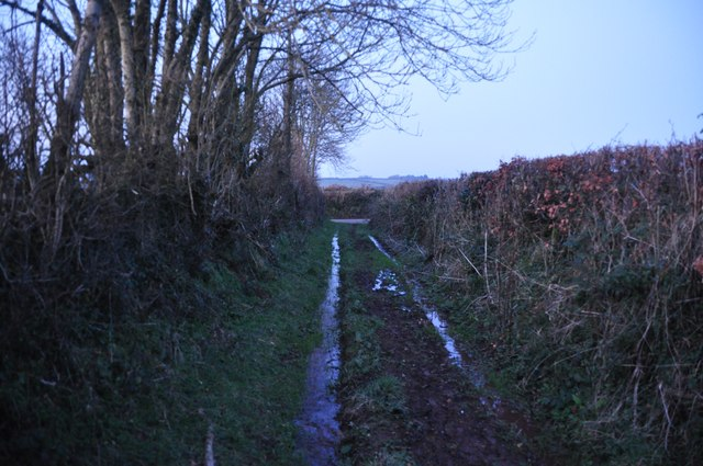 Mid Devon : Muddy Footpath