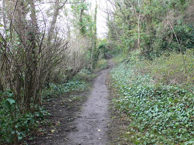 Footpath up the Vardre