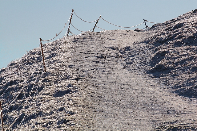 Ice on the electric fence, Pinnacle Hill, Malverns