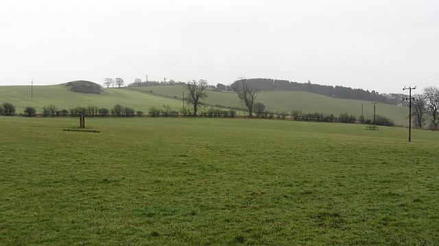 Field, Easter Newburn
