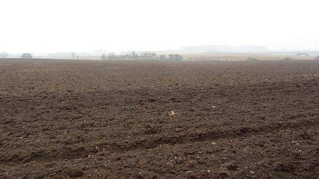 Ploughed field, Little Pilmuir