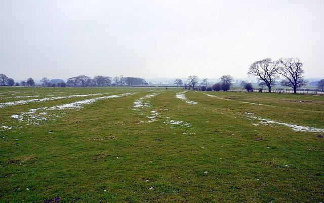 Medieval ploughing north of Richmond Hill