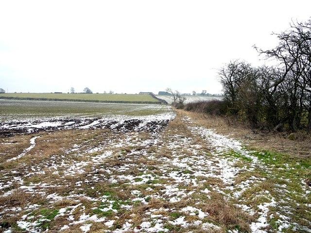 Footpath through fields near Hawkwell Grange