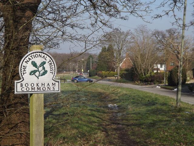 Bookham Commons