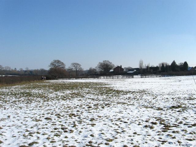 Noakes Field