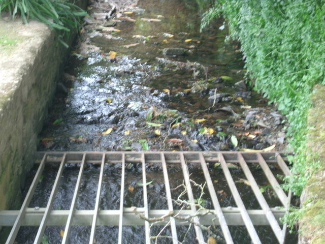 Stream, Milford Lane