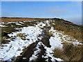 SE1445 : Ebor Way on Stead Crag by Chris Heaton