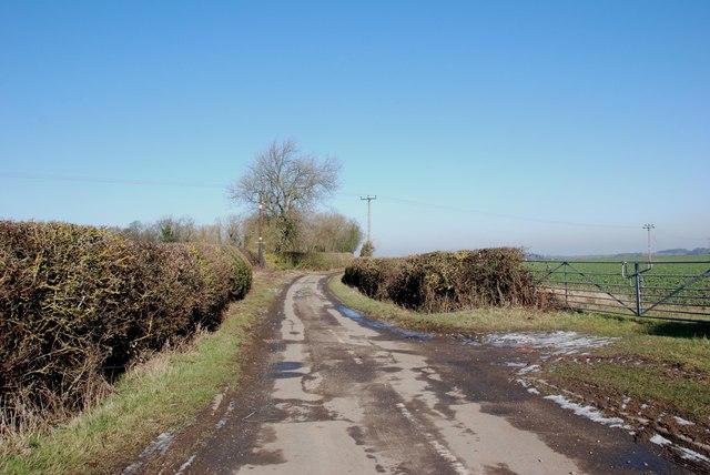 A view along Thornyhurst Lane from Lynn Lane