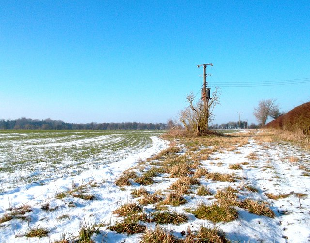 Field, Snow and Electric Pole