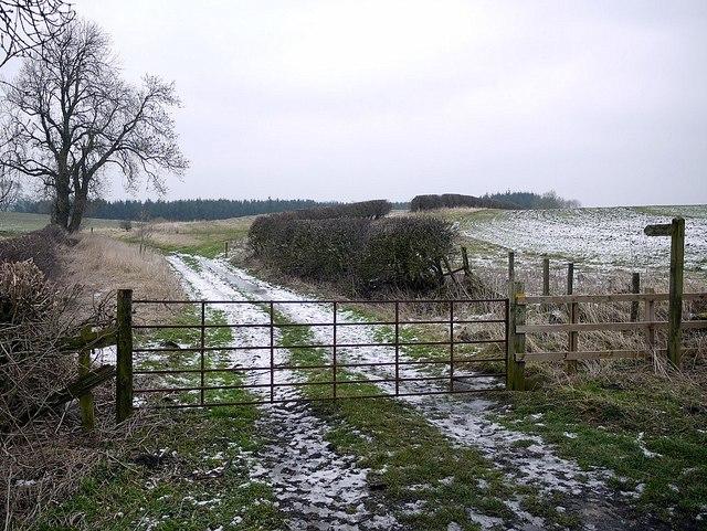 Footpath to Stamfordham from Dark Lane