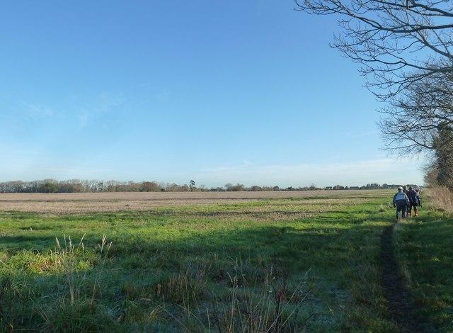 A circular walk around North Hayling (6)