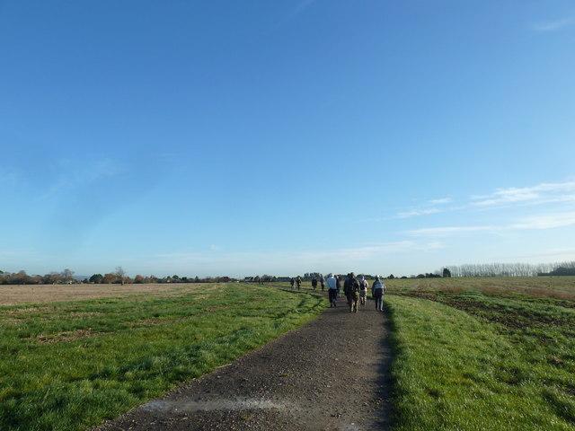 A circular walk around North Hayling (9)