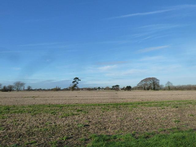 A circular walk around North Hayling (13)