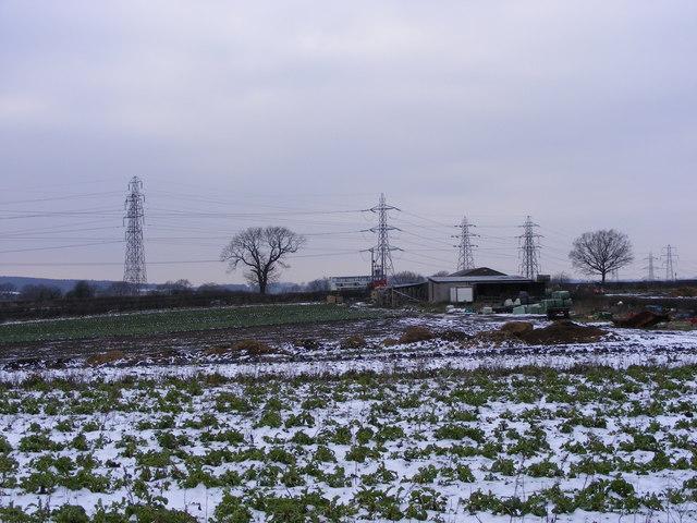 Plantation View