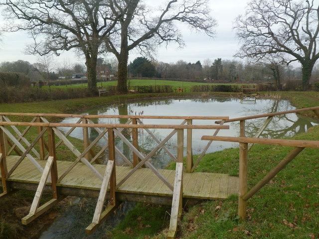 Colehill, pond