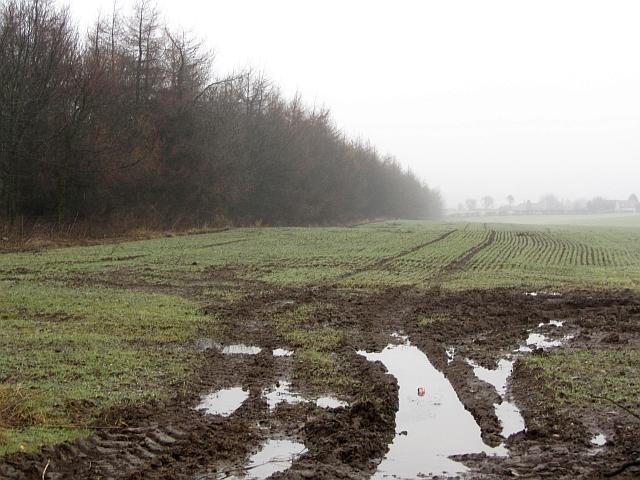Soggy field entrance