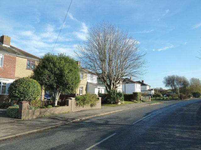 A circular walk around North Hayling (25)
