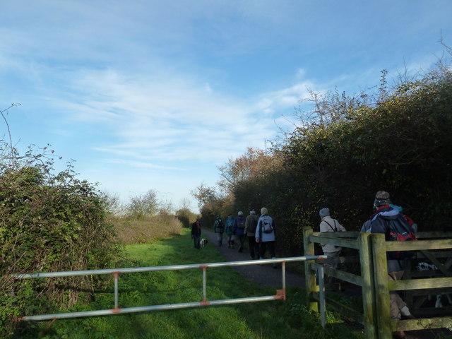 A circular walk around North Hayling (29)