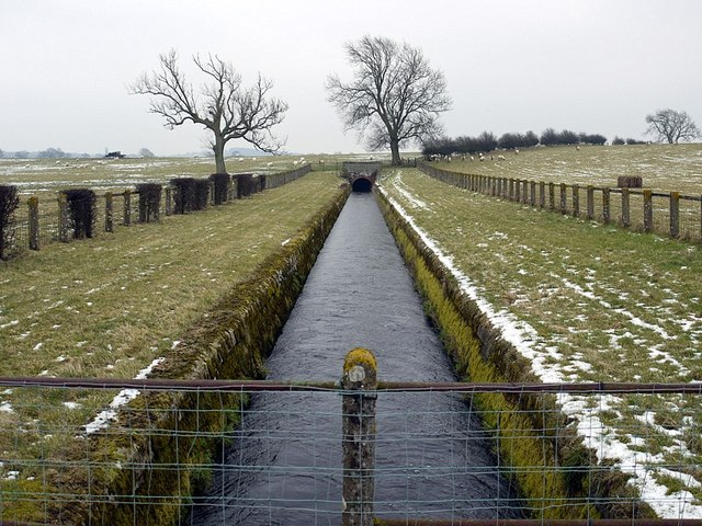 Whittle Dene Watercourse between Thornham Hill and Butcher Hill Farms