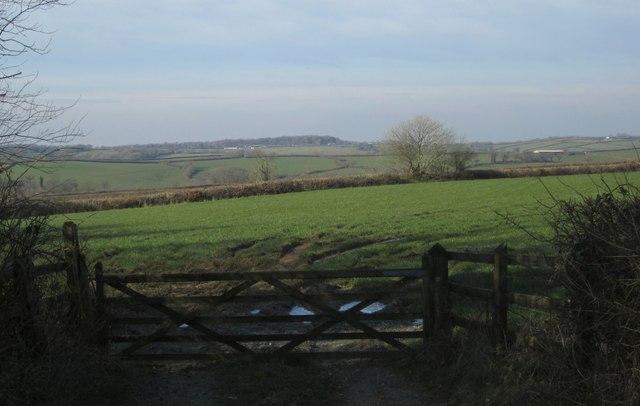 Field near Goodacre